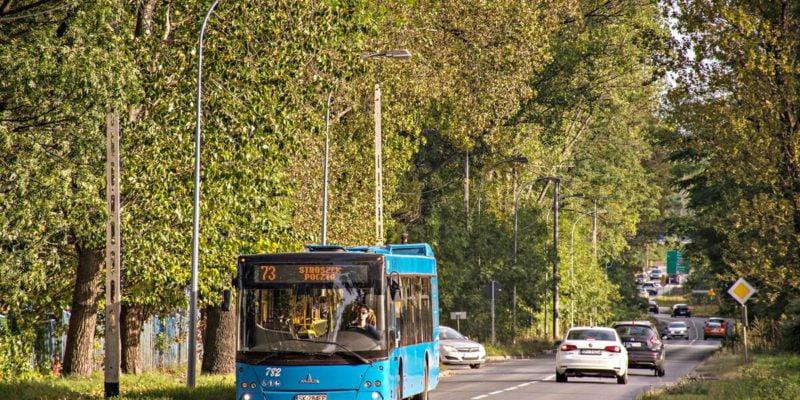 linii autobusowej nr 73
