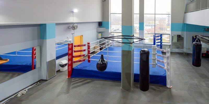 bokserzy z bytomia